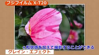 フジフイルム X-T20 (カメラのキタムラ動画_FUJIFILM)