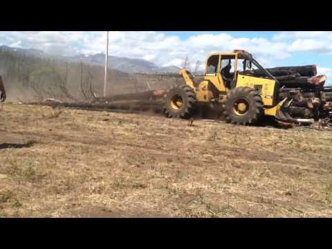 A turn of burnt logs