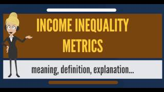 What is INCOME INEQUALITY METRICS? What does INCOME INEQUALITY METRICS mean?