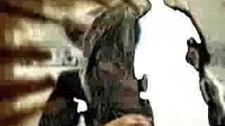 Kokomo video by Black Dice