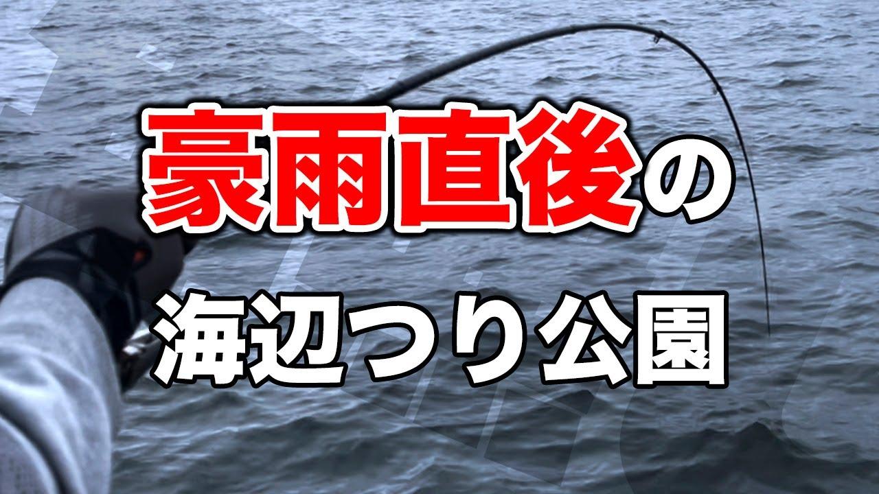 豪雨直後は釣れる説を確かめにいったら人生最大の奇跡的釣果に【海辺つり公園・横須賀】