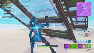 Fortnite but i am a bot :P