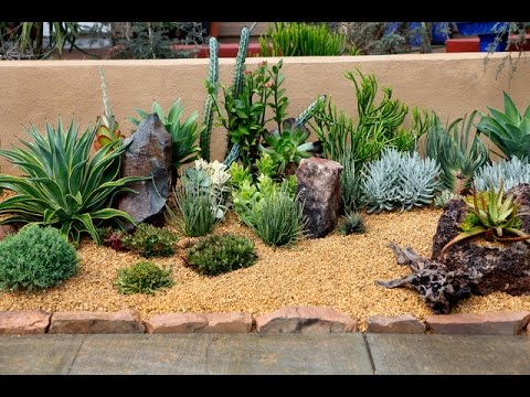50 Backyard Desert Landscaping Ideas - YouTube