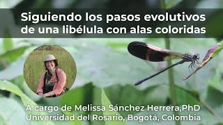 Siguiendo los pasos evolutivos de una libélula con alas coloridas. Con Melissa Sánchez, PhD