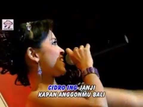 Ilang Tanpo Aran - Fajar Fadila