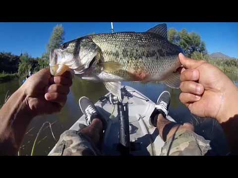 Horseshoe Dam Arizona Bass Fishing | Kayaking | Ft (Bassholefishing)