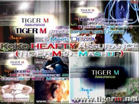 Dezza Sander, van Doorn, TIGERM - Koko Hefty Assurance (A TIGER M Mashup 2011)