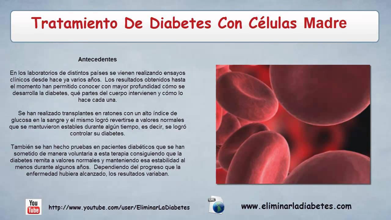 Tratamiento De Diabetes Con Celulas Madre | Curar Diabetes