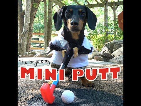 Crusoe & Oakley Play Mini Putt!