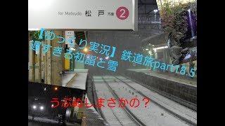 【ゆっくり実況】鉄道旅 part18.5 遅すぎる初詣と雪