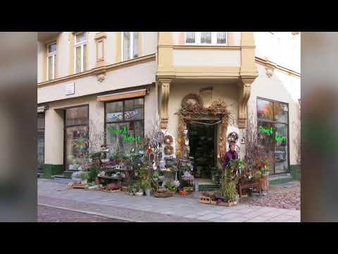 A Walk Through Wittenberg