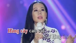 Tâm Sự Đời Tôi Karaoke - Lưu Ánh Loan