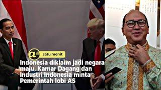 Indonesia diklaim jadi Negara maju, Kadin usulkan Pemerintah lobi AS