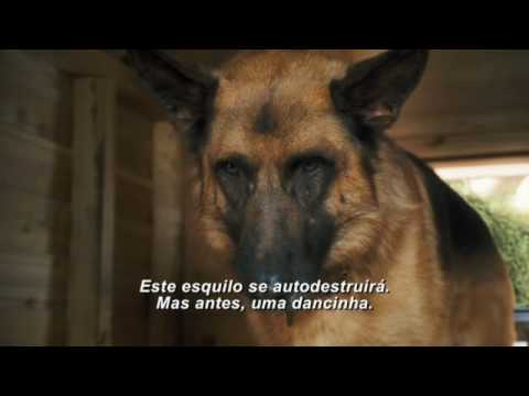 Trailer do filme Como Cães e Gatos