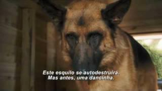 Como Cães e Gatos 2 - Trailer Teaser (legendado)