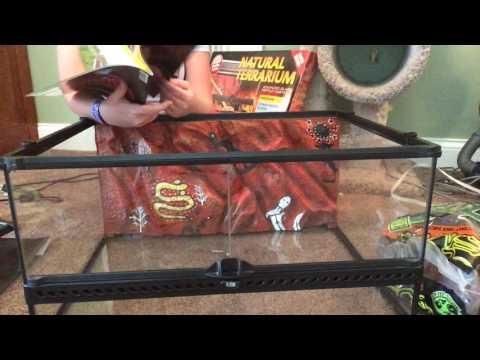 Leopard Gecko Tank Unboxing Exo Terra