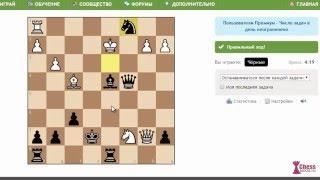 видео Шахматные задачи онлайн
