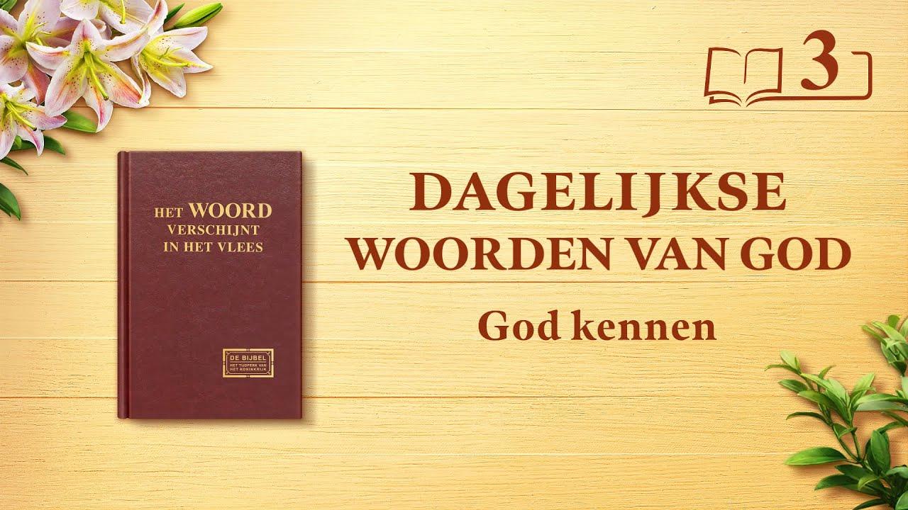 Dagelijkse woorden van God | God kennen is de weg naar het vrezen van God en het mijden van het kwaad | Fragment 3