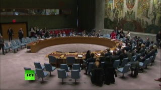Заседание Совбеза ООН по Сирии