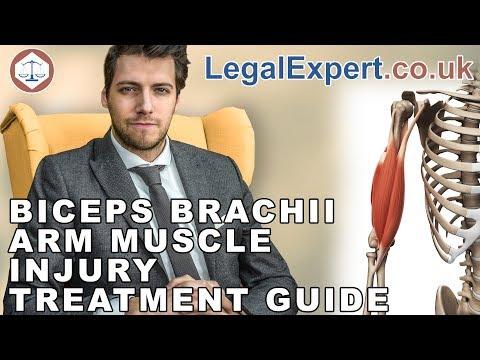Biceps Brachii Arm Muscle Injury Treatment Guide ( 2019 ) UK
