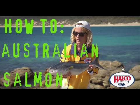 HOW TO: Catch Australian Salmon