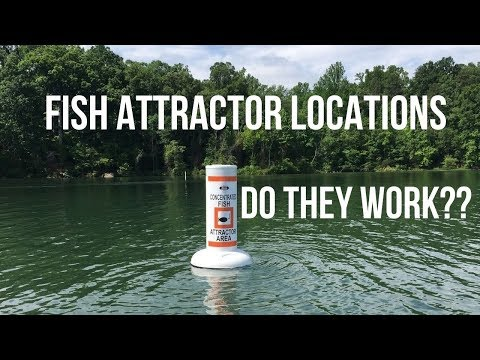 Testing Out FISH ATTRACTORS At Burke Lake In Fairfax Virginia (Do They ACTUALLY Work?!)