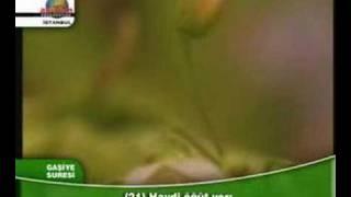 mustafa ismail & fethi melici