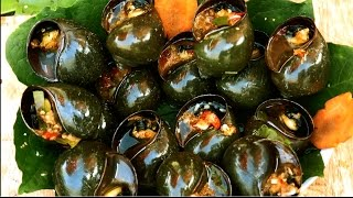 Snails cooking, Steamed snails with sweet chili sauce from rural people in Cambodia