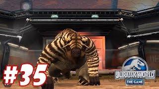 SMILODON vs MEGATHERIUM : Trò chơi nuôi khủng long đánh nhau - Jurassic World The Game #35