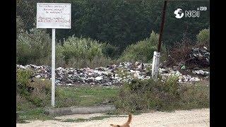 O gunoiște neautorizată, distruge ecosistemul unui iaz din Condrița