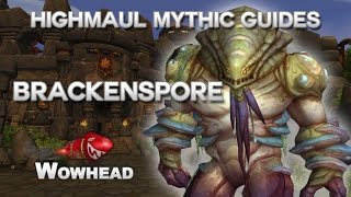 Brackenspore Mythic Guide by Method