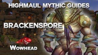 Brackenspore Mythic Guide by Method