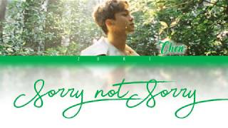 Download Sorry Not Sorry (하고 싶던 말) - CHEN [HAN/ROM/ENG COLOR CODED LYRICS] Mp3
