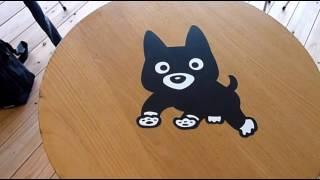 阿蘇駅名誉駅長の「くろちゃん」人気急上昇-。JR九州は、愛らしい黒...