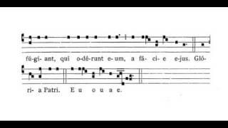 introitus - Spiritus Domini replevit orbem terrarum