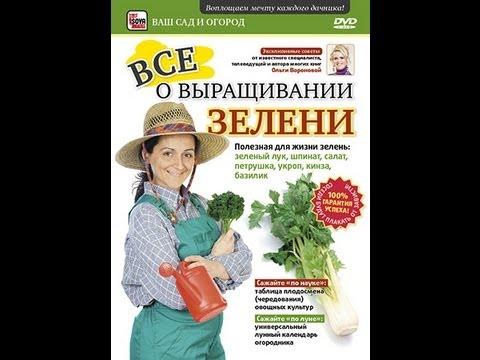 Ч.1. ВСЕ о ВЫРАЩИВАНИИ ЗЕЛЕНИ: зеленый лук, шпинат, салат, петрушка, укроп, кинза, базилик. Часть 1