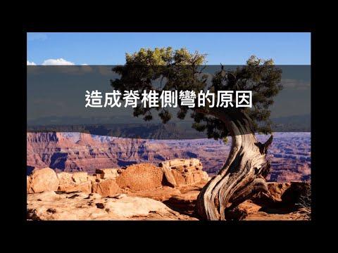 閻曉華說脊椎側彎第一章 造成脊椎側彎的原因