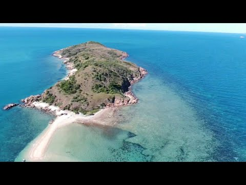 FISHING LOCAL ISLANDS OFF TOWNSVILLE - Tusk Fish And Cod. HOOK UPS TO HUGE FISH.