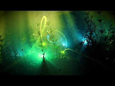 James Hood - Animal (Official Music Video)