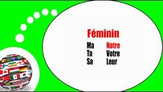 Французского видео урок = Притяжательные прилагательные в мужском роде