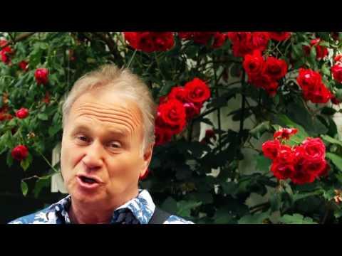 Tamsweg  in Melodie TV-  Sendung Herzlichst