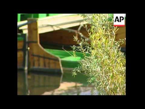 Aggressive zebra mussels damaging Spanish waterways