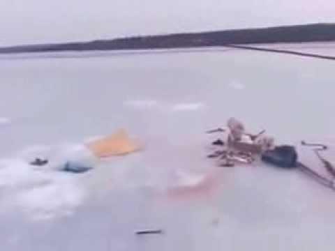 Смешное и необычное видео о рыбалке - Форум рыбаков
