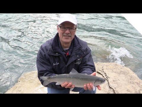 Steelhead Fishing from Shore in the Niagara River
