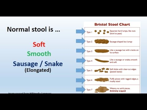 Watery Stool – Causes Of Liquid, Fluid Bowel Movement, Feces
