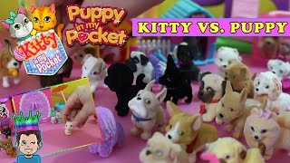 Puppy in my Pocket vs. Kitty In My Pocket - Cats vs. Dogs!