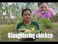 Beautiful lady cook Chicken slaughtering with best recipe