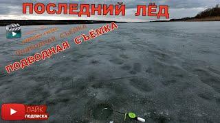 Рыбалка последний лёд Рыбалка зимняя Подводя съёмка травянское водохранилище Рыбалка 2020 Рыба