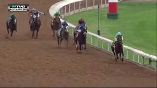 RACE REPLAY: 2015 Breeders' Cup Classic featuring American Pharoah