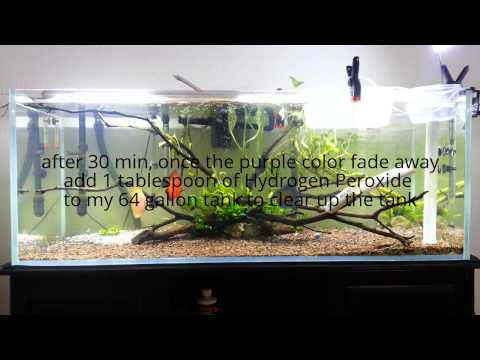 Planted Aquarium Medication Part3 (Potassium, Phosphates)